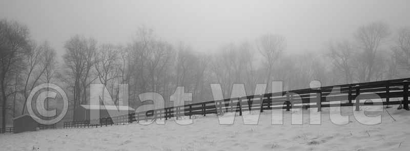 Snow_and_fog-1_February_21_2019_1_1600_sec_at_f_13