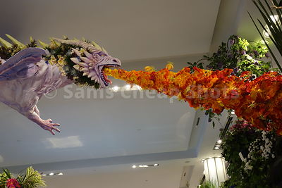 Macy's Flower Show NYC photos