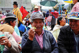 Man chewing coca leaves ( Erythroxylum coca ) at an event promoting traditional uses of the coca leaf , La Paz , Bolivia