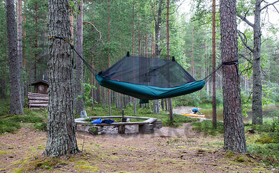 Camp in Koli National Park