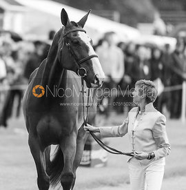 Louise Harwood and MR POTTS at the trot up, Land Rover Burghley Horse Trials 2018