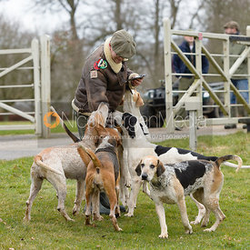 The Cambridge University Drag Hounds at Grimsthorpe Castle 4/2