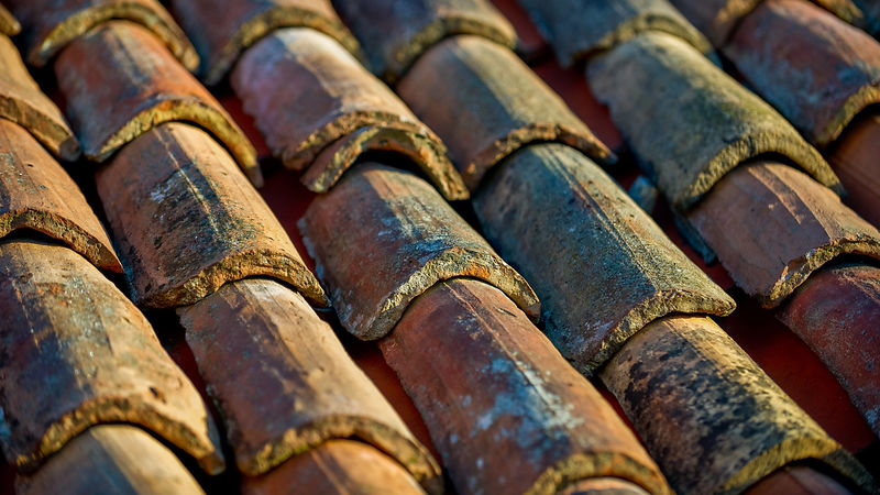 Venetian Roof Tiles in Early Morning Sunshine