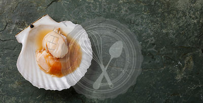 Raw uncooked Scallop in cockleshell and lemon on gray background