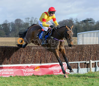 The Brocklesby Point-to-point at Brocklesby Park 7/2