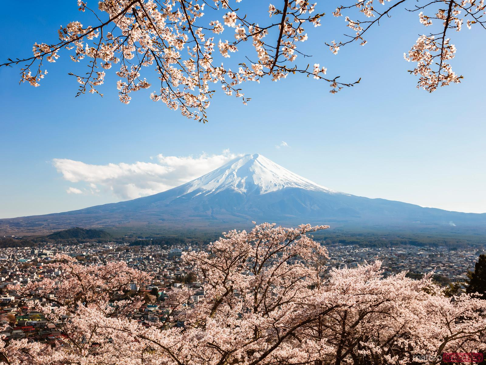 Matteo Colombo Travel Photography Mount Fuji With Cherry