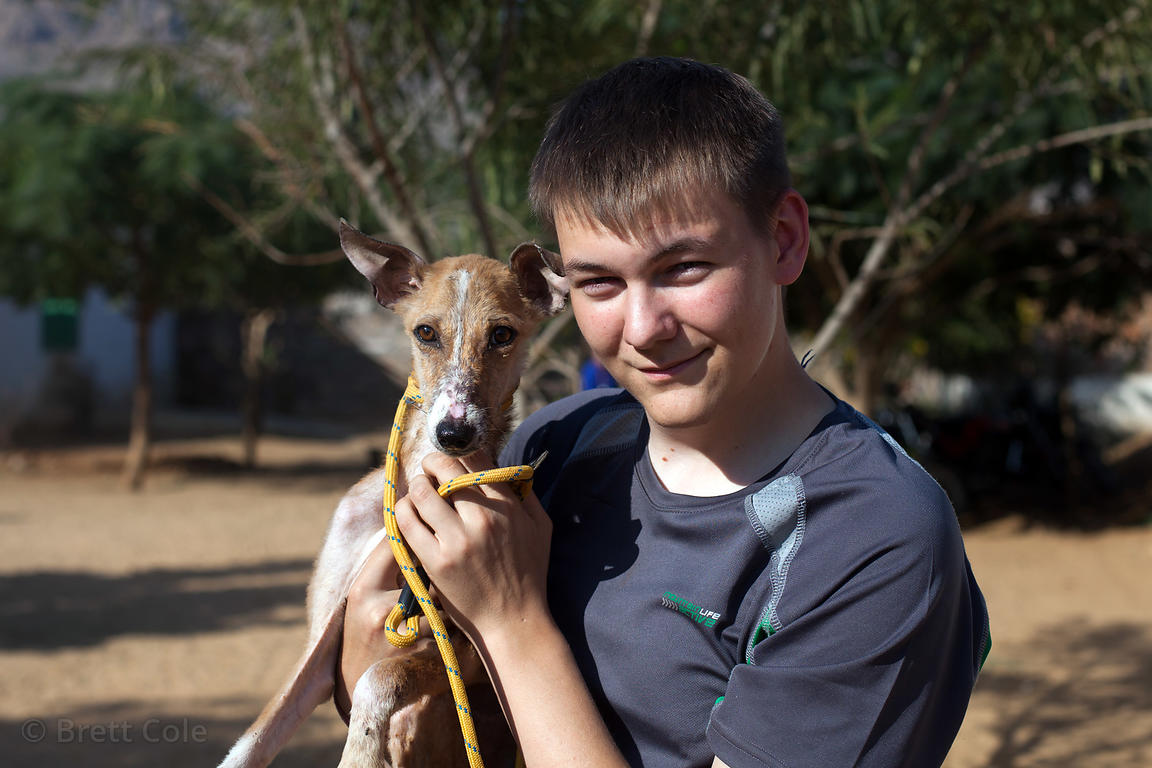 A volunteer nutures a dog at the Tree of Life for Animals rescue center in Pushkar, India (tolfa.org.uk)