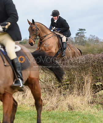 Mike Chatterton jumping a hedge at Eaton Grange. The Belvoir Hunt at Eaton Grange 7/2