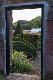 Geometric topiary viewed through walled garden entrance