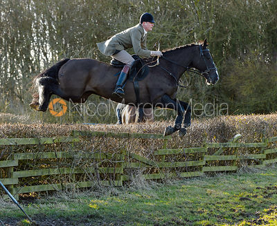 AS jumping a hedge at Town Park Farm - The Cottesmore at Town Park Farm