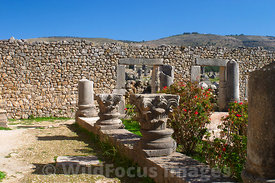 House of Columns, Volubilis, Morocco; Landscape