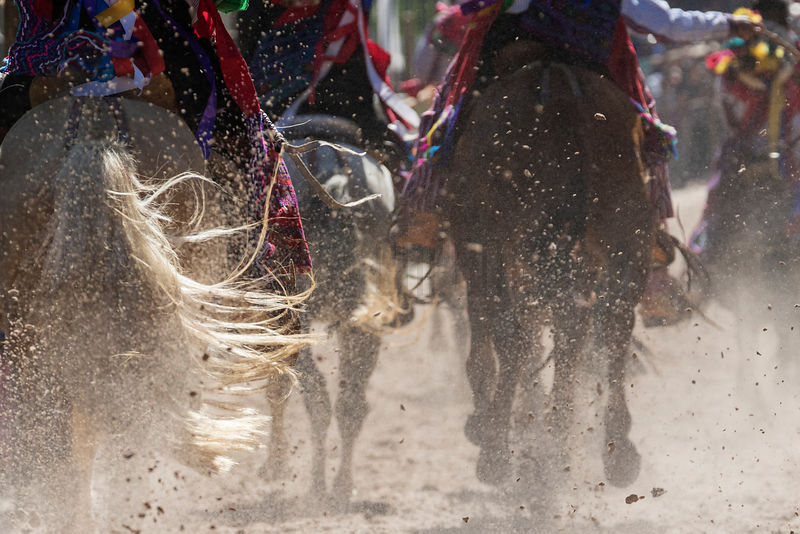 Horses at the Annual Day of the Dead Race at Todos Santos Cuchumatán