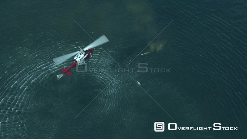 Aerial of a rescue helicopter hovering above a man in the sea Cape Town Western Cape South Africa