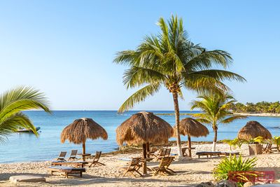 Parasols and sun loungers on tropical beach, Riviera Maya, Mexico
