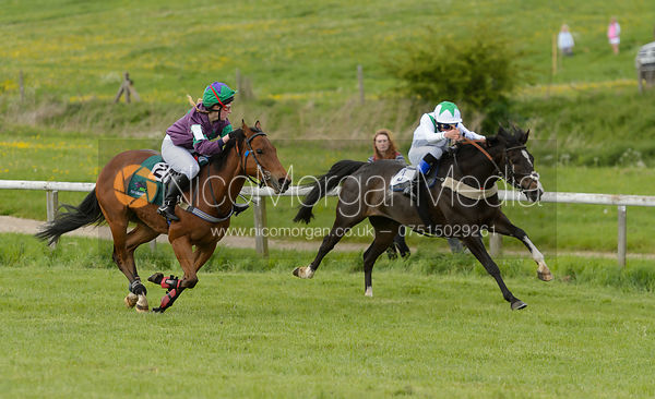 Pony Race 1 - The Melton Hunt Club Point-to-Point 2017