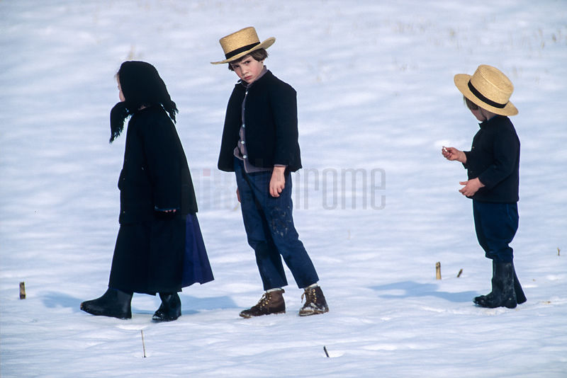 Amish Children in a Snow Covered Field