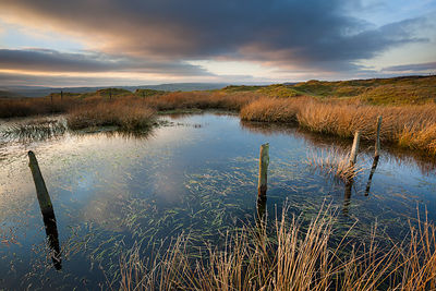 Last light on Longstone Moor