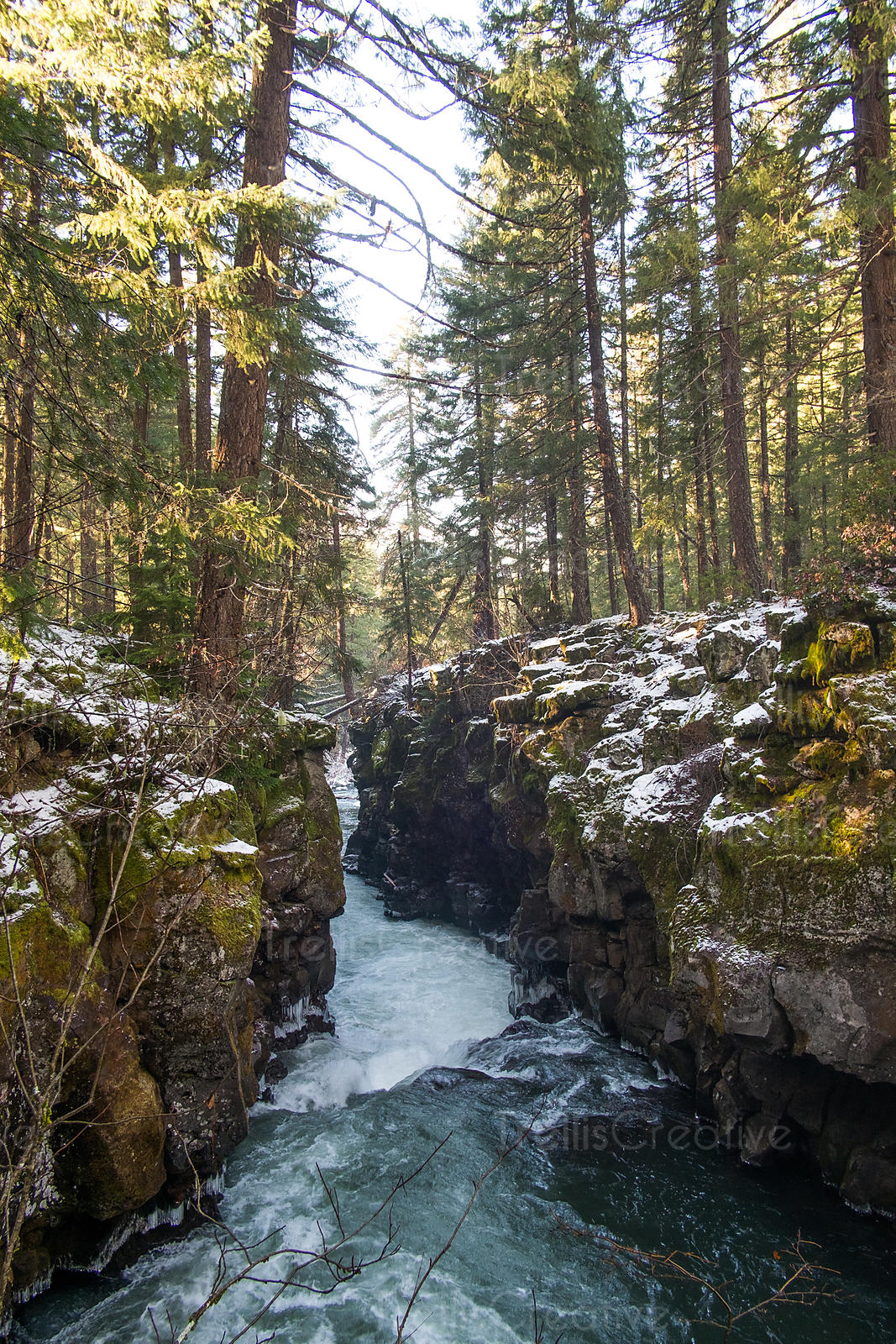 Oregon, gorge