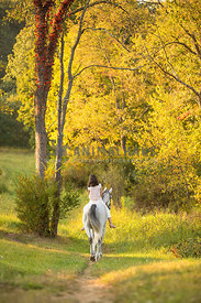 Girl walking on horse in woods