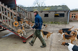 Loading the Belvoir hounds into the lorry at the Belvoir Hunt Kennels