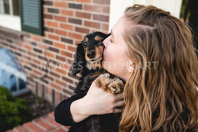 Mini Dachshund Getting Kisses