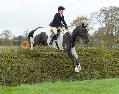 Georgie Mason jumping a hedge near the meet in Long Clawson