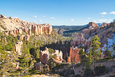 Top of Canyon- Bryce Canyon National Park