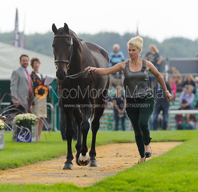 Jonelle Price and THE DEPUTY - The first vets inspection (trot up),  Land Rover Burghley Horse Trials, 3rd September 2014.