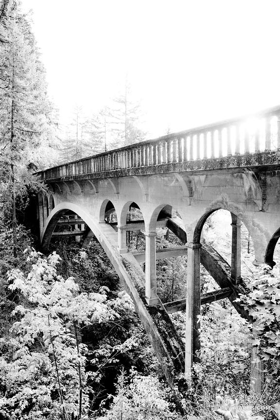 OLD STONE BRIDGE HISTORIC COLUMBIA RIVER HIGHWAY COLUMBIA RIVER GORGE OREGON BLACK AND WHITE VERTICAL