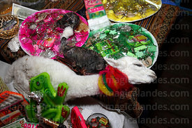 Mesas / offerings for Pachamama with dead baby llama and dried llama foetus (suyu) for sale on stall in Witches Market, La Pa...