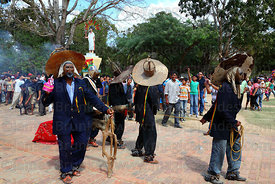 Achus (masked old man figures) parade with wooden horse during festival, San Ignacio de Moxos, Bolivia