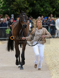 Jodie Amos and MATT - First Horse Inspection, Mitsubishi Motors Badminton Horse Trials 2014
