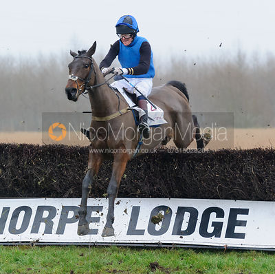 Race 7 (i) - Maiden - Midlands Area Club Point-to-point 2017, Thorpe Lodge 29/1