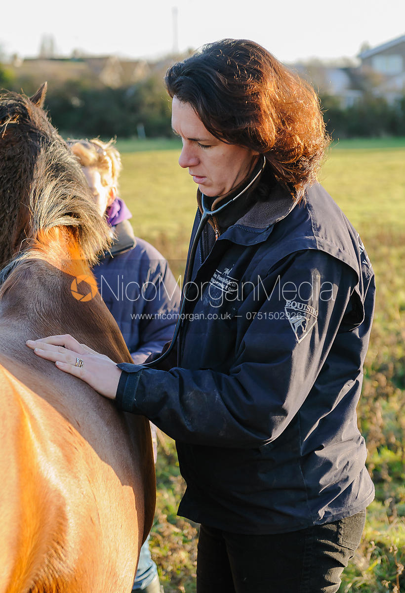 Veterinary visit to a pony in Northamptonshire