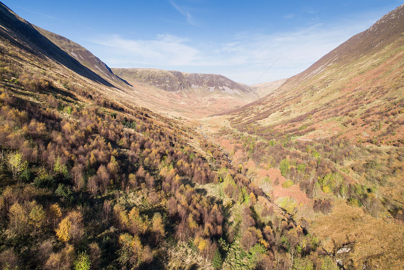 Forest regeneration in Carrifran, a 1600 acre ice carved valley. Part of Carrifran Wildwood, an initiative led by the Borders...
