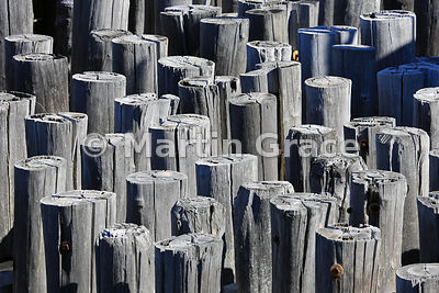 Timber piles of the ferry landing stage, Staten Island, New York, USA