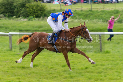 Racetech 148cms Novice Riders Final - Pony Racing - MSSH Point to Point 2014