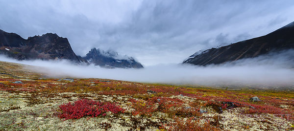 Approaching Fog | Tombstone Territorial Park, Yukon