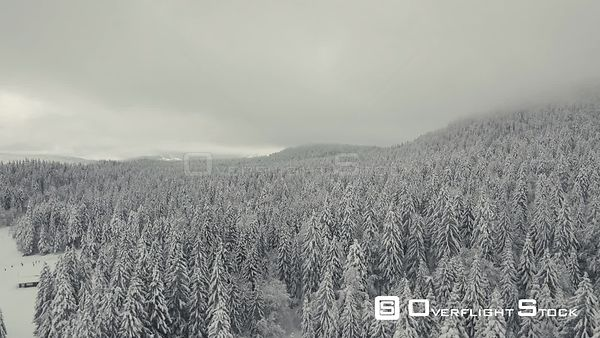 Drone flight over a Snow covered Forest in La Vattay in the French Jura Mountains.