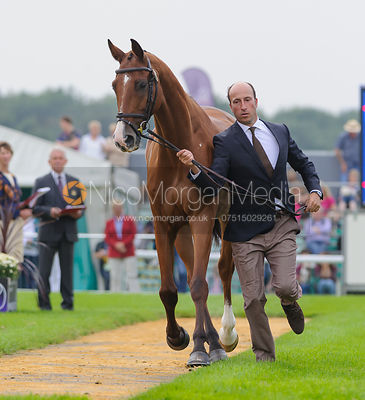 Tim Price and RINGWOOD SKY BOY - The first vets inspection (trot up),  Land Rover Burghley Horse Trials, 3rd September 2014.