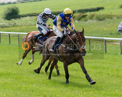 Race 4 Open Race - Meynell and South Staffs Point to Point 2014