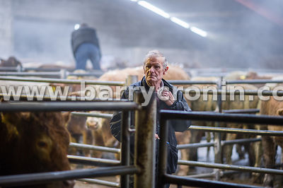 27th October, 2015.A farmer pictured at Ballyjamesduff Mart, County Cavan. Photo:Barry Cronin/www.barrycronin.com info@barryc...