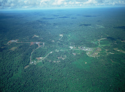 Aerial view of a road built for oil exploration in Ecuador