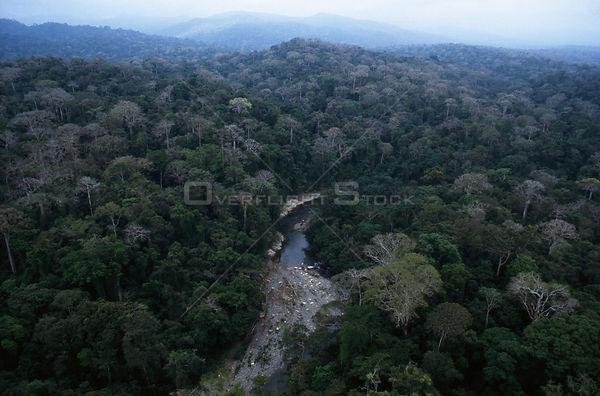 PANAMA Darien Gap -- Aerial photo of the rainforest and a river in the Darien Gap of Panama