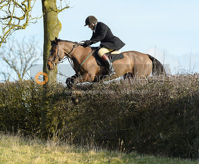 Charlie Smith jumping a hedge near Ladywood - The Cottesmore at Priory Farm