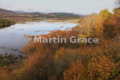Insh Marshes National Nature Reserve (RSPB), Kingussie, Highlands, Scotland
