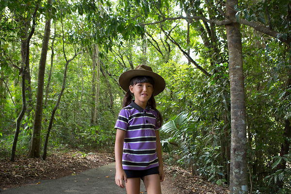 Misa, 8 ans marche dans la forêt tropicale, plateau Atherton, Queensland, Australie / Misa, 8 years old is walking in the rainforest, Atherton plateau, Queensland, Australia