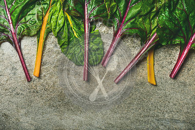 Flat-lay of fresh colorful leaves of swiss chard over concrete stone background, copy space, top view