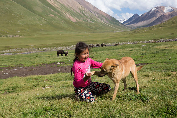 Jasmine, 8 ans, joue avec son chien, Kol Ukok, Kochkor, Kirghizistan / Jasmine, 8 years old, plays with her dog, Kol Ukok, Ko...