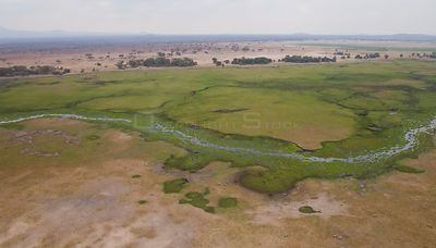View of river running through Amboseli National Park, Kenya, Africa, August 2009